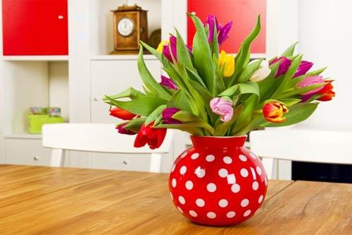 vazi v interere 47