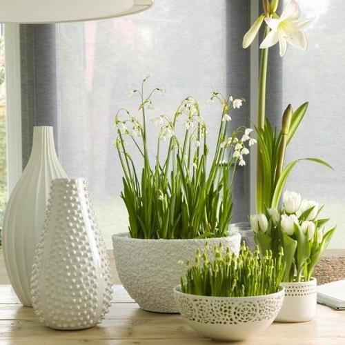 vazi v interere 52