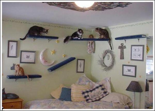 комнаты для животных